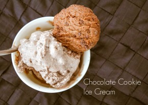 Chocolate Cookie Ice Cream