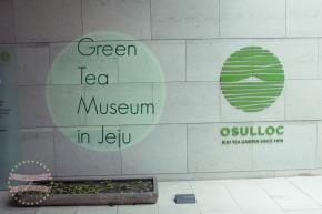 O'Sulloc Green TeaMuseum