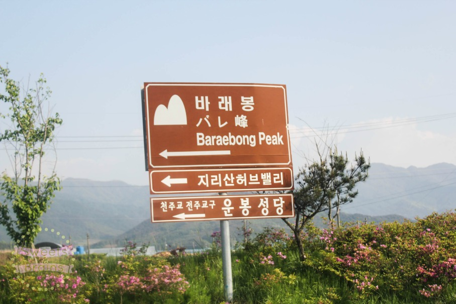 baraebong